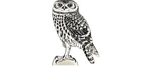logo AJ